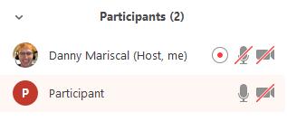 Recording_Indicator_Participants.PNG