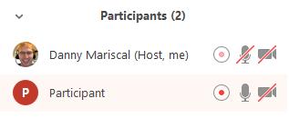 Participant_Recording.PNG