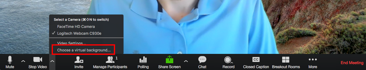Enable_Virtual_Background_During_Meeting.png