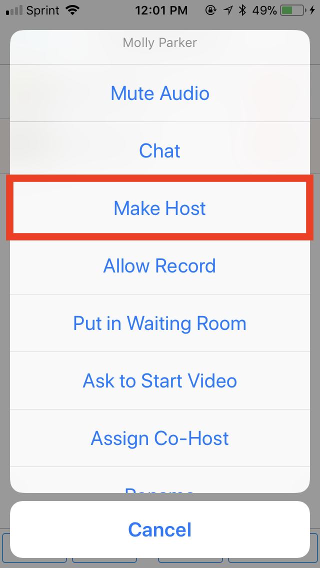 ios-makehost.png