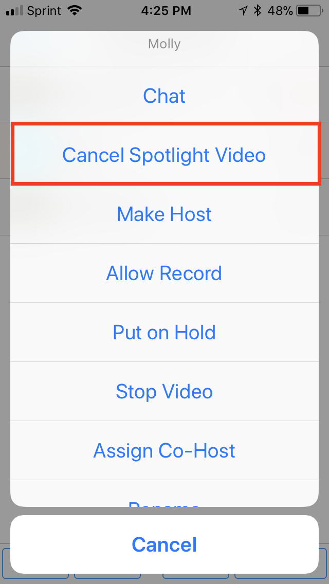 iOS-cancelspotlight.PNG