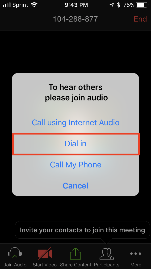 iphone-dialin.PNG