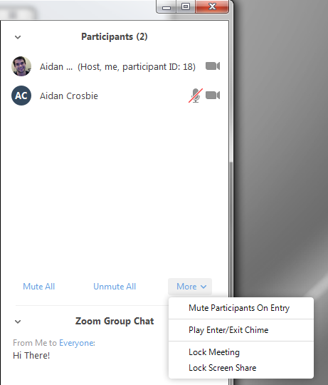 Establishing Team Member Roles: Zoom How-To